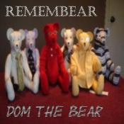 BriaskThumb [cover] Dom The Bear   Remembear